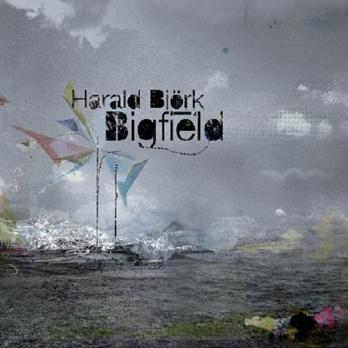 HARALD BJORK - BIGFIELD REMIXED NEW VINYL